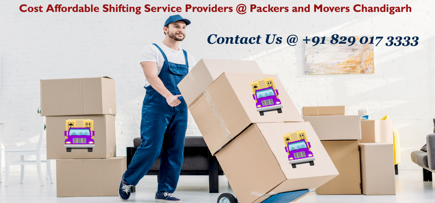 Follow This 20-Minute Routine To Declutter Your Entryway With Packers And Movers Chandigarh